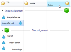 Text and Image Alignment